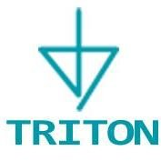 Triton Services, Inc.