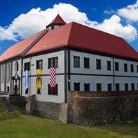 Zamek Kożuchów