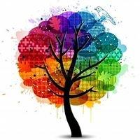 Niepubliczne Przedszkole Kolorowe Drzewo