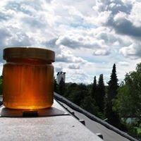 Haderner Honig