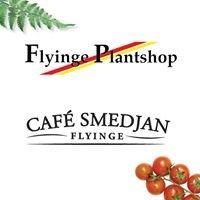 Flyinge Plantshop & Café Smedjan