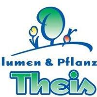Blumen & Pflanzen Theis PGmbH