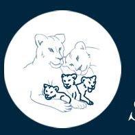 Stiftung Löwenkinder