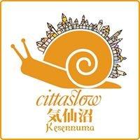 Slow City Kesennuma start-up project