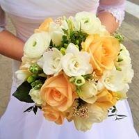 Kwiaciarnia Cztery Pory Roku Skierniewice Rawka