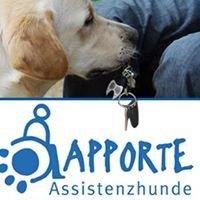Apporte Assistenzhunde für Menschen im Rollstuhl e.V.