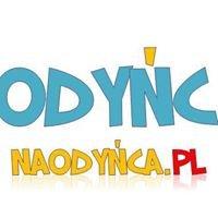 naodynca.pl