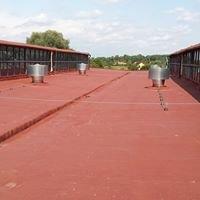 Dachy i izolacje z piany PUR - Budo - Projekt