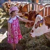 Der kleine Bauernhof - Bauernhof Urlaub mit Kinder in Bayern / Franken