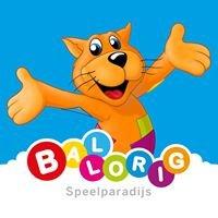 Ballorig Den Bosch