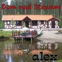 Dom nad Stawem - ALEX