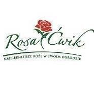 RosaĆwik