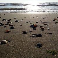 De Zee Kust Schiermonnikoog