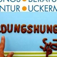 Bildungsberatungsagentur Uckermark