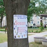 Organizowanie Społeczności Lokalnej w Stalowej Woli