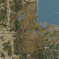 Emajõe-Suursoo Nature Reserve