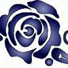 De Roos vulpenspeciaalzaak