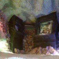 Jaskinia Solna Raszyn