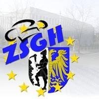 ZSGH Bytom