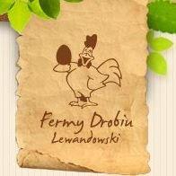 Fermy Drobiu Lewandowski