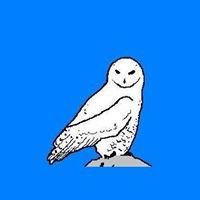Kita Hedwig und ihre Kräuterlehrlinge e.V.