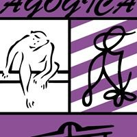 Agogica Hasselt