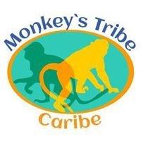 Monkey's Tribe Costa Rica