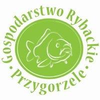 Gospodarstwo Rybackie Przygorzele