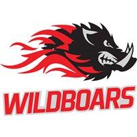 WildBoars