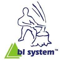 BL System Maszyny Leśne oraz Maszyny do Przygotowania Drewna Kominkowego
