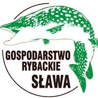 Gospodarstwo Rybackie Sława sp z oo