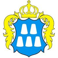Долина - міська рада / Dolyna City Council