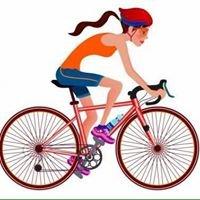 On Your Bike Tours Launceston