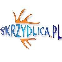 Skrzydlica.pl