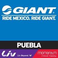 Giant Store Puebla