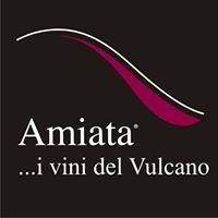 Amiata, i vini del Vulcano