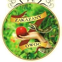 Zakazany Owoc Pizzeria Pub Bar Restauracja Krosno