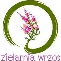 Sklep Zielarsko - Medyczny Wrzos