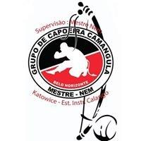 Capoeira w Katowicach