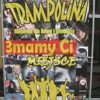 Trampolina - Włocławek