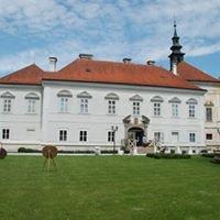 Chateau Radič