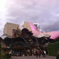 Vinoteca , Bodegas y Hotel Marqués de Riscal