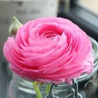 Kwiaciarnia Rosa Białystok