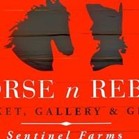 Sentinel Farms Vermont, Horse N Rebel