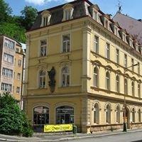 Městská knihovna Karlovy Vary