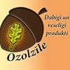 Ozolzīle
