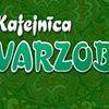 Varzob