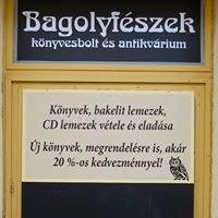 Bagolyfészek