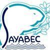 Municipalité de Sayabec