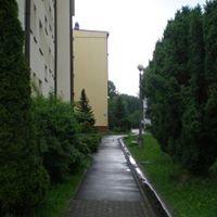 Spotted+  Brzesko Browarna